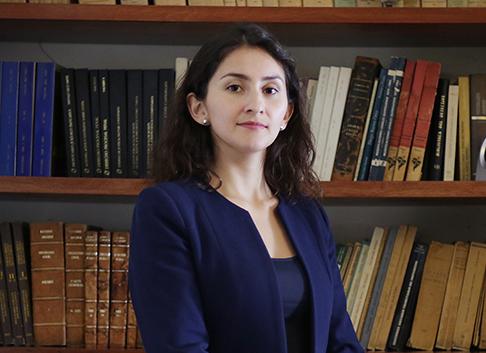 Opinión: Medidas cautelares en la Comisión Interamericana de Derechos Humanos (CIDH) ¿Cuándo y cómo corresponde su aplicación?