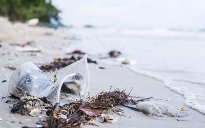 Prevención y Compliance en Delitos Ambientales y Contaminación