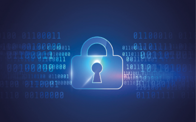 PRIVACY y DATA PROTECTION